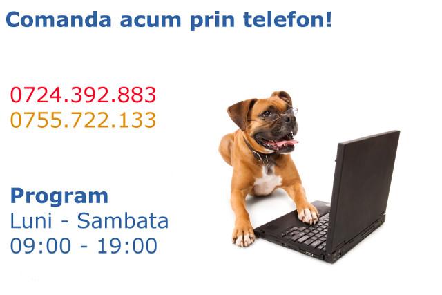 Suna ACUM!
